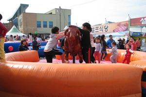 홍천 인삼한우명품축제,강원도 홍천군,지역축제,축제정보