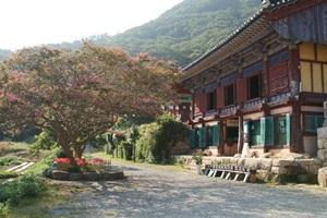 만덕산백련사 8국사다례문화제,전라남도 강진군,지역축제,축제정보