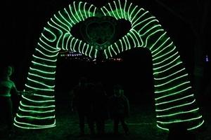 보성차밭빛축제,국내여행,음식정보
