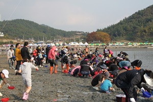 여자만갯벌노을축제,국내여행,음식정보