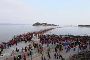 진도 신비의 바닷길 축제,국내여행,음식정보