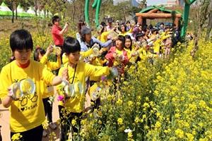 함평나비대축제,전라남도 함평군,지역축제,축제정보