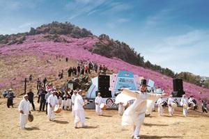대금산진달래축제,경상남도 거제시,지역축제,축제정보