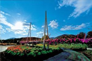 거제섬꽃축제,경상남도 거제시,지역축제,축제정보