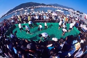 삼천포항수산물축제,경상남도 사천시,지역축제,축제정보