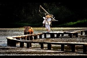 무섬외나무다리축제,국내여행,음식정보