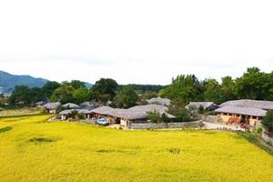 외암민속마을 짚풀문화제,충청남도 아산시,지역축제,축제정보