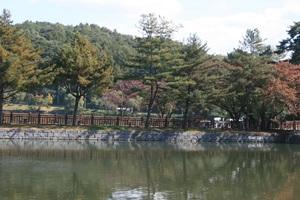 의림지 동계민속대제전,충청북도 제천시,지역축제,축제정보