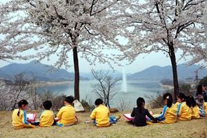 청풍호벚꽃축제,충청북도 제천시,지역축제,축제정보