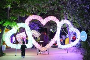 청도프로방스 별빛동화마을 빛축제,국내여행,음식정보