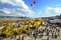 마산가고파 국화축제,지역축제,축제정보