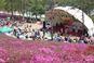 군포철쭉축제,지역축제,축제정보