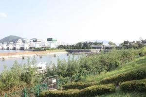 철새의 낙원, 대자연 속을 거니는 사하 당일코스2,부산광역시 사하구