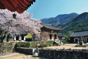 전라북도 순환관광 : 정읍 및 부안,여행코스,여행추천코스,국내여행
