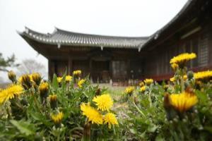 익산시티투어-치유와 상생의 길 - 익산 둘레길 걷기(10월) ,전라북도 익산시