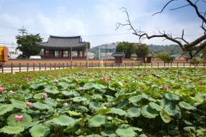 정기투어 B코스 (매월 2,4주 토요일),전라북도 정읍시