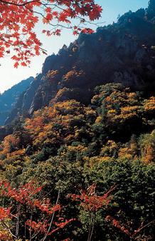 산 중의 산, 설악산