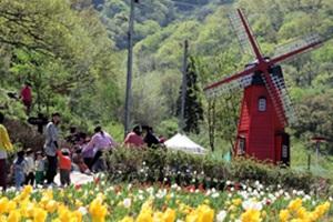 문화의 중심도시 광주 동구,국내여행,음식정보