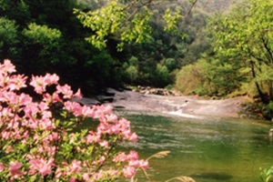 산과 물이 둘러싼 무궁화의 고장 홍천,국내여행,음식정보