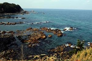 생태 문화 관광 도시 울진,국내여행,음식정보
