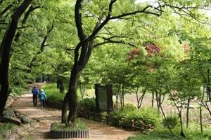 긍지의 관악人, 약동하는 서울 관악구 ,국내여행,음식정보