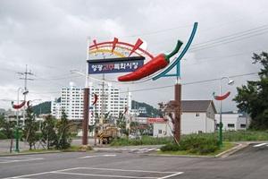 영광고추특화시장,전라남도 영광군,전통시장,재래시장