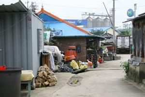 나산시장,전라남도 함평군,전통시장,재래시장