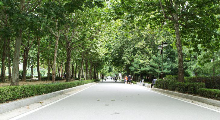 동작구에 위치한 보라매공원은 옛 공군사관학교 자리에 조성한 대규모 공원이다.