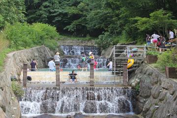 민주지산자연휴양림에는 계곡과 물놀이장 등이 자리 잡고 있어 여름철 피서지로도 인기다.