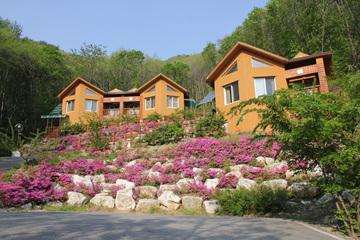민주지산자연휴양림의 숙박 시설은 너와집, 황토방, 목조건물 등 그 구조와 모양이 제각기 다르다.