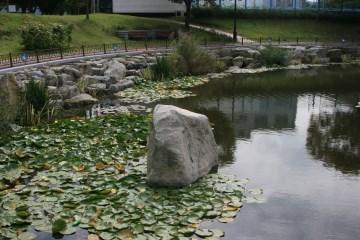 경호정 주변에 자리한 수려한 경관의 연못