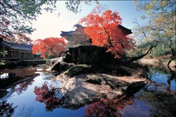 청암정은 사진을 찍는 계절과 방향마다 색다른 매력을 가지고 있다.