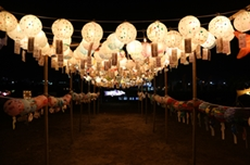 양양에서 연어랑 놀자! 연어축제 18일 개막 , 국내여행, 여행정보