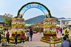 2018 고창국화축제 - 역사문화유적과 자연생태, 그리고 국화, 국내여행, 여행정보
