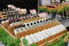 솔내음 맡으며 와인 한 잔, 개성만점의 영동와인 골라먹는 재미, 국내여행, 여행정보