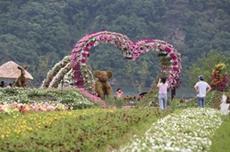사계절 각기 다른 매력, 자라섬 남도 꽃 정원 유료개방, 국내여행, 여행정보