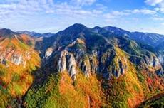 힐링 관광도시 '산소카페 청송군' 국내 최고의 글로컬 생태관광도시로 도약, 국내여행, 여행정보