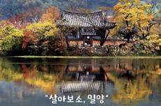 청정영남알프스 맑은 기운 받아 가이소~, 국내여행, 여행정보