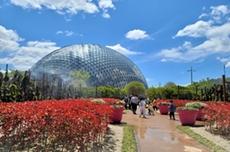 거제식물원! 아는 만큼 즐긴다. (세번째 이야기), 국내여행, 여행정보