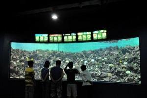 바다 곁에서 바다를 만나다, 화진포해양박물관,강원도 고성군