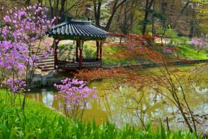 자연 속에서 피어난 궁궐의 아름다움, 창덕궁,서울특별시 종로구