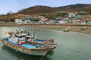 야생화와 단풍으로 사시사철 아름다운 섬, 풍도,경기도 안산시