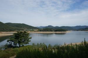 소박하지만 아름다운, 옥정호와 구절초테마공원,전라북도 정읍시