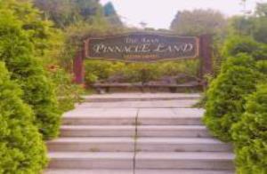 사계절 볼거리가 가득한 피나클랜드(Pinnacieland),충청남도 아산시