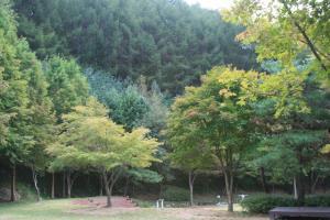 자연과 하나 되는 봉학골산림욕장,충청북도 음성군
