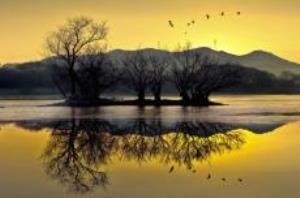 사람이 만들고 자연과 철새가 쉬어가는 곳, 주남저수지,경상남도 창원시