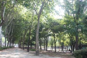 사진 찍기 좋은 곳 대구 남구 '앞산',대구광역시 남구