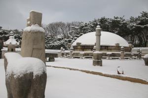 선정릉, 눈 내린 모습에서 역사를 찾다 ,서울특별시 강남구