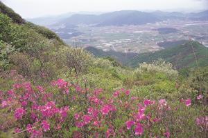 땅끝마을에 찾아오는 봄, 흑석산 철쭉