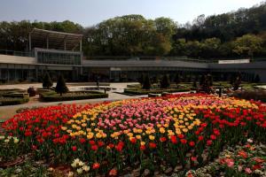 눈으로 보고 몸으로 느끼는 자연, 신구대식물원,경기도 성남시